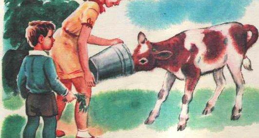 Домашнє молоко в інтернаті
