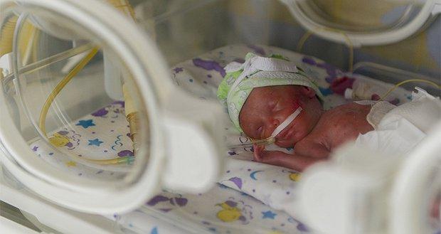 Допоможіть малюкам вижити