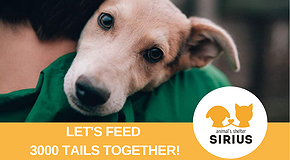 Let's feed 3000 dogs together!